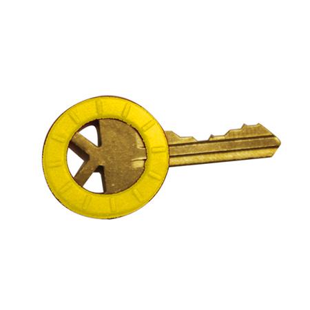 Neon Key Identifiers Pro Lok