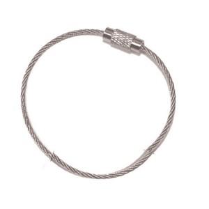 Stainless Steel Key Ring